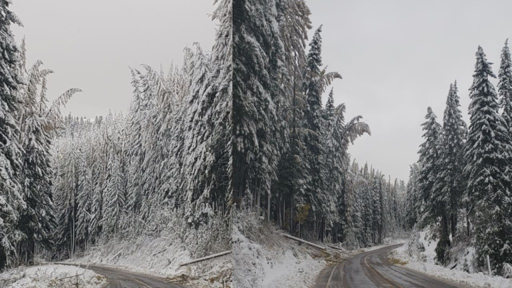 Tollgate Highway back open after nearly 150 downed trees forced closure