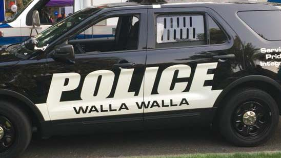 Walla Walla police investigate case of possible domestic violence