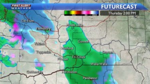 Thursday afternoon rain showers