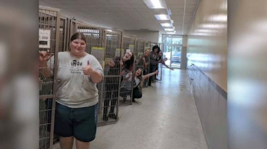 Florida Humane Society finds homes for 250 animals in one week
