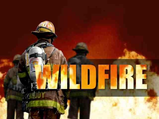 Firefighters Save Homes from Wildfire Near Yakima