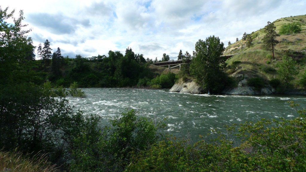 Man drowns attempting to rescue pet pig from Wenatchee River