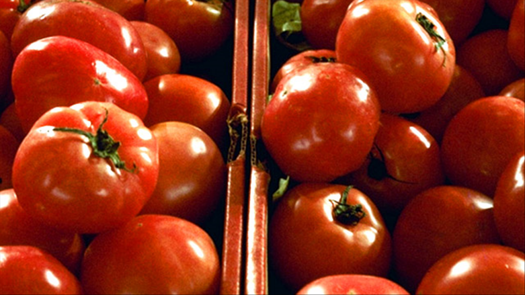 Oregon woman accused of using can of tomato sauce as weapon
