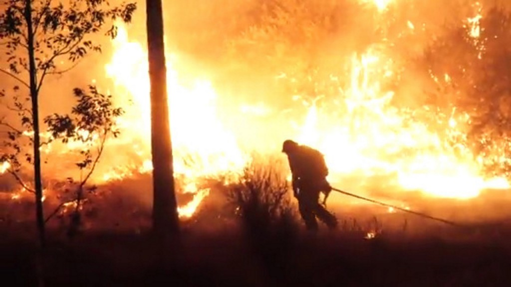 thousands fight wildfires in national forests across Arizona