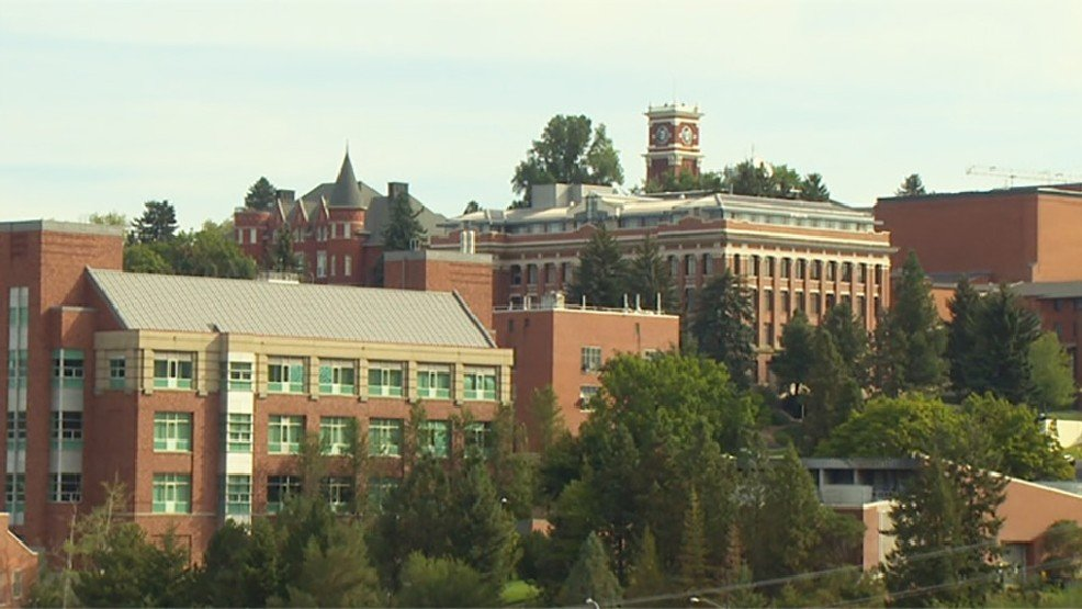 Study concludes that falls from windows are rare at WSU