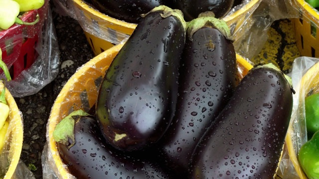 Grilled eggplant with black olive-tomato spread on focaccia