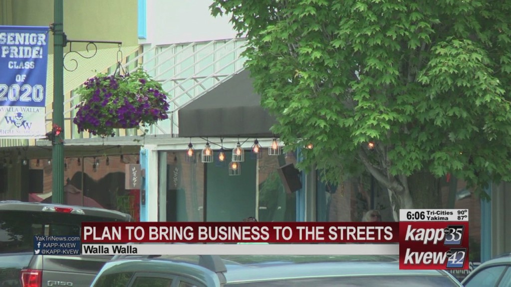 Walla Walla City Council Plan