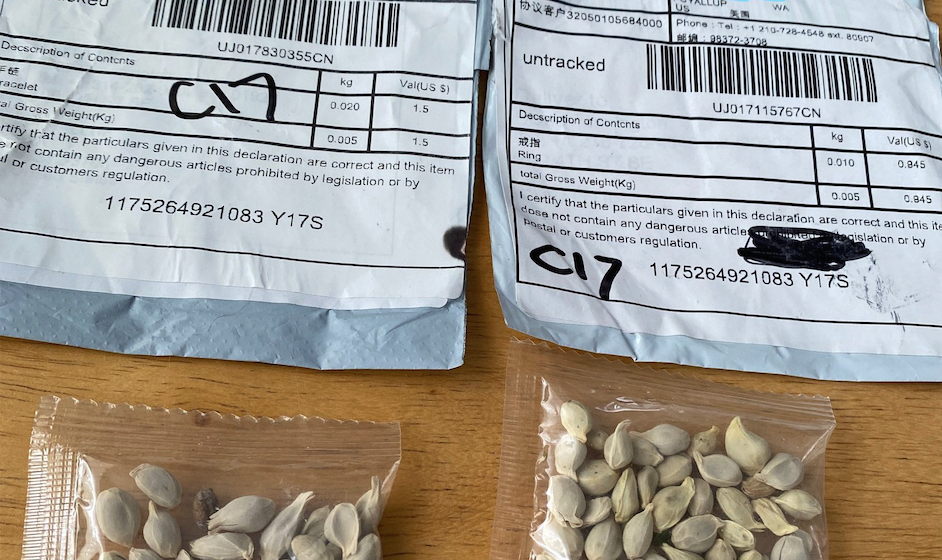 Seeds sent from China to US