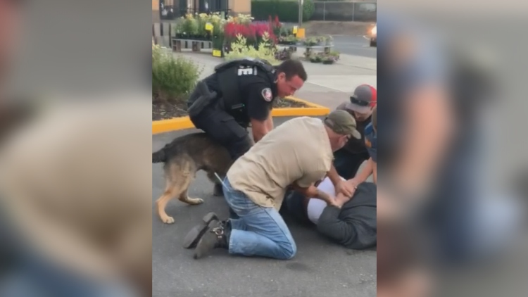 Ypd K9 Use Of Force Incident Fred Meyer