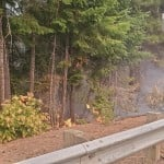 Flames From The Cold Creek Fire Creep Along The Ground Adjacent To Hwy 12 Credit Usda Forest Service
