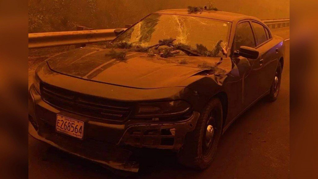 Oregon State Police Trooper Vehicle Damaged By Tree