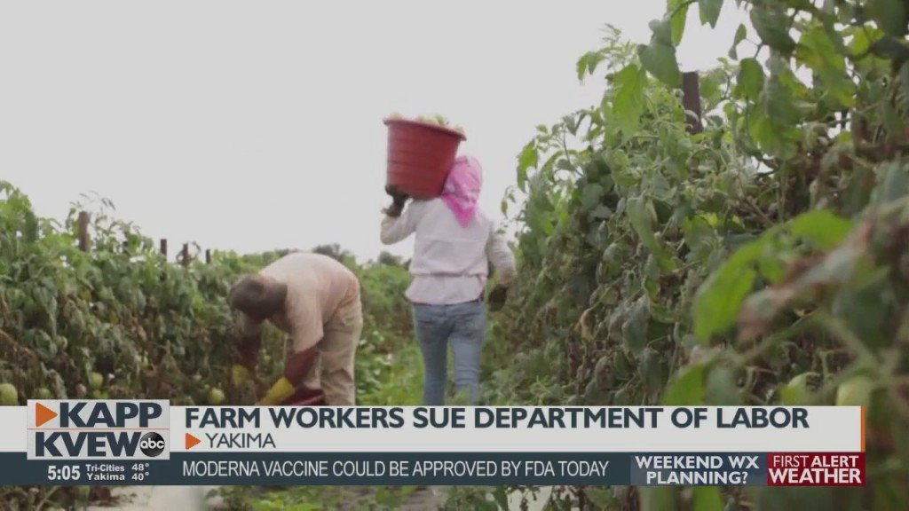 Farm Workers Sue Department Of Labor