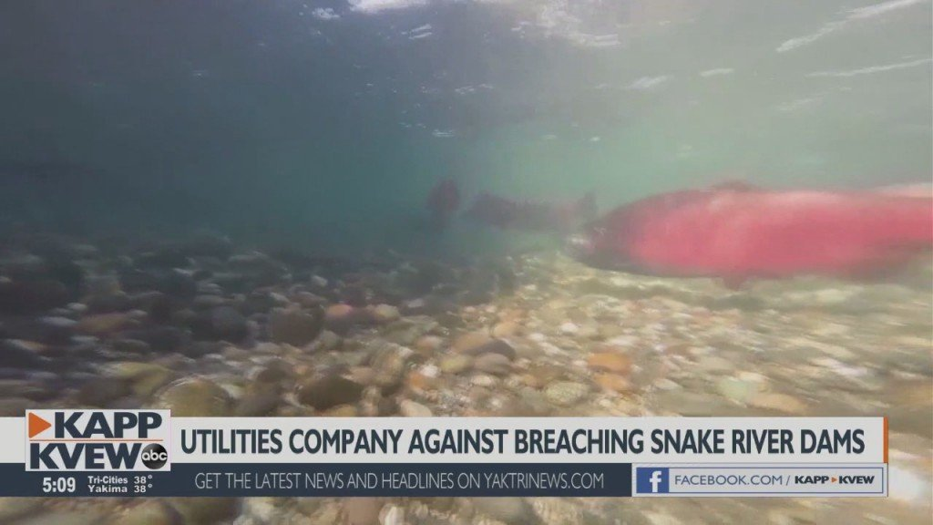 Utilities Company Reacts To Proposal To Breach Lower Snake River Dams