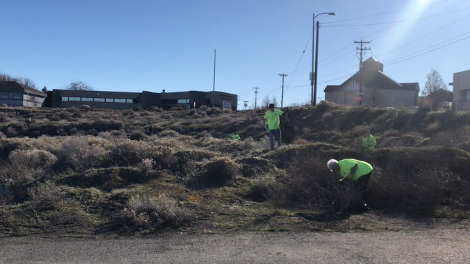A group of volunteers clean up trash in Kennewick, WA.