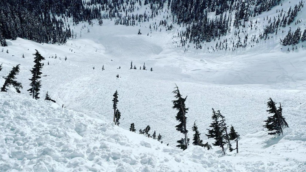 Avalanche At Source Lake Courtesy Jonathon Spitzer