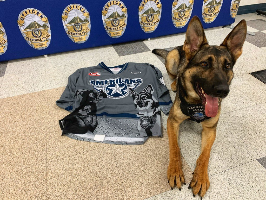 Tri-City Americans honor Kennewick police dogs with jersey
