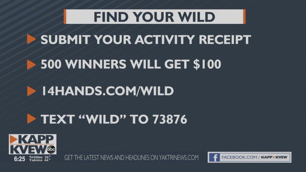 14 Hands Wild Sweepstakes