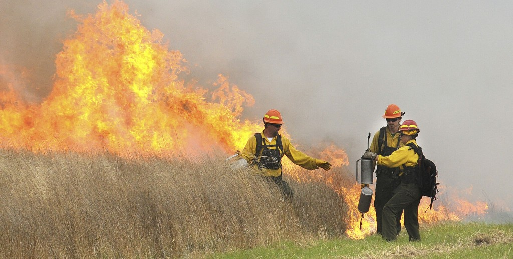 Amid Clamor To Increase Prescribed Burns, Obstacles Await - Northwest Wildfire
