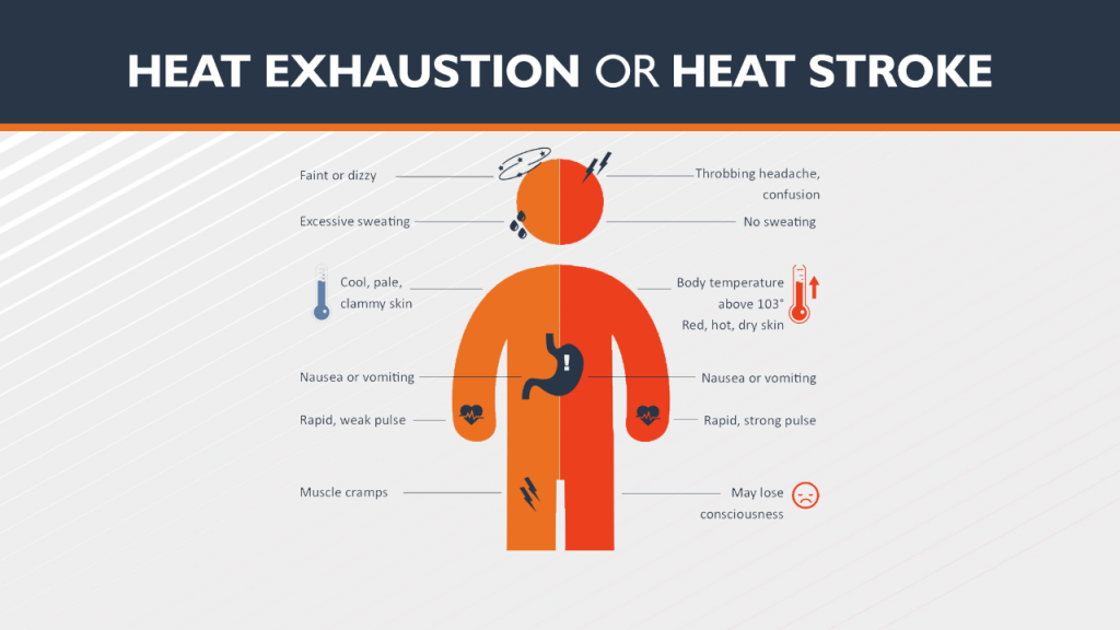 Heat Stroke And Exhaustion Graphic - Kennewick, Franklin County