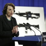 California Appeals Court Ruling Upending Assault Weapons Ban