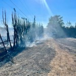Wildfires near The Dalles burns almost 1,000 acres, Gov. Brown sends resources
