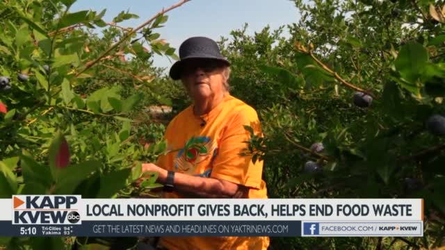 Tri-Cities Nonprofit Gleans To Help Others, Reduce Food Waste