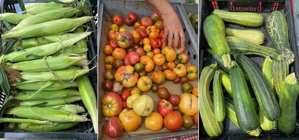 Corn, Zucchini, Tomatoes: 5 Recipes To Make The Most Of Summer's Bounty