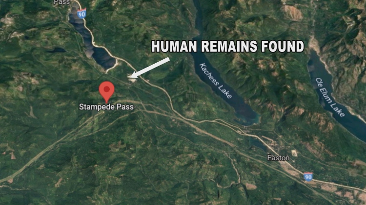 Human Remains Found In Kittitas County Homicide Investigation Stampede Pass